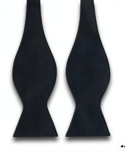 crna leptir mašna